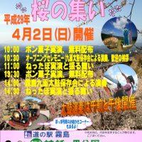 4月2日日曜日は「春はきりしま 桜のつどい」を開催!